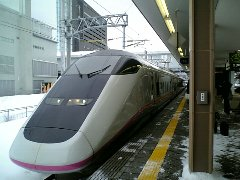 2008921609.jpg